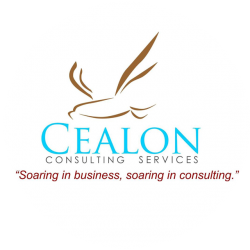 Caelon Consulting Firm